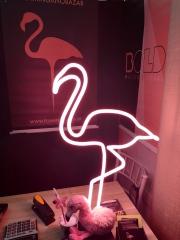 Flamingo \ PopPlus